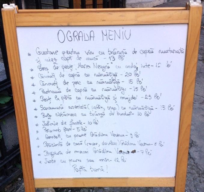 00 Ograda la terasa Verona - octombrie 2014