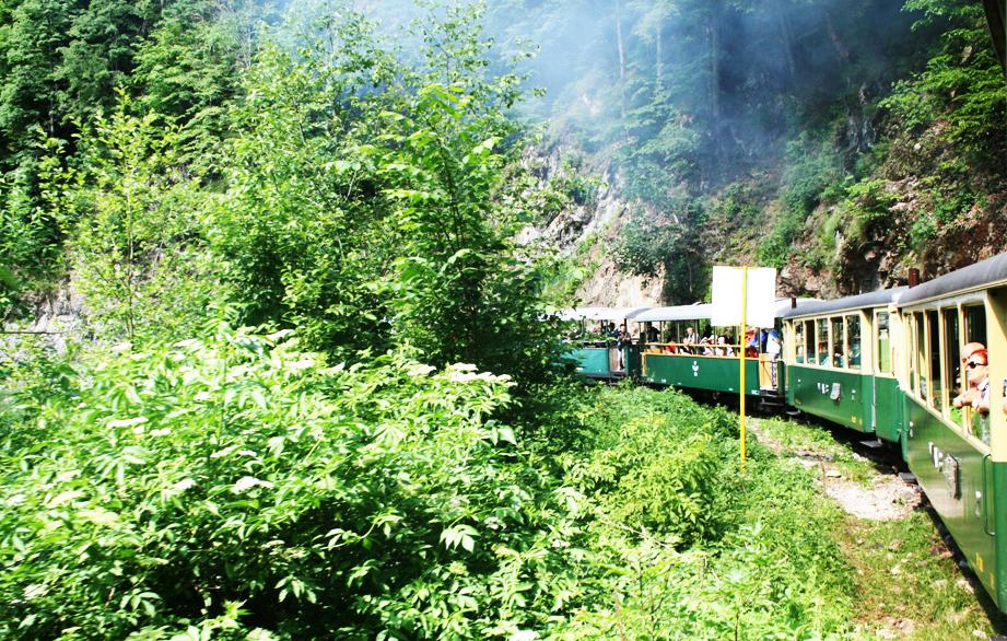 Valea Vaserului Mocanita