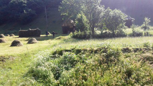 Cu Mocănița pe Valea Vaserului, în Maramureș